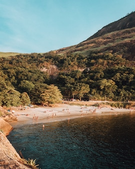 Praia povoada com muitas pessoas, aproveitando um lindo dia de verão