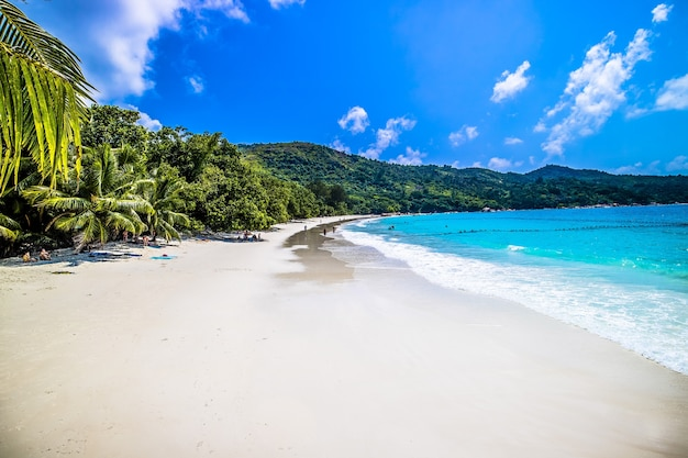 Praia rodeada pelo mar e vegetação sob a luz do sol e um céu azul em praslin nas seychelles