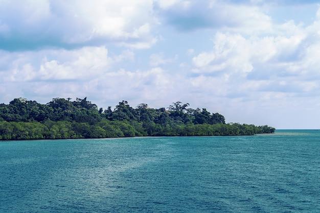 Praia selvagem caribenha, com bosques verdes voltados para o mar e uma árvore isolada quase na água do mar.