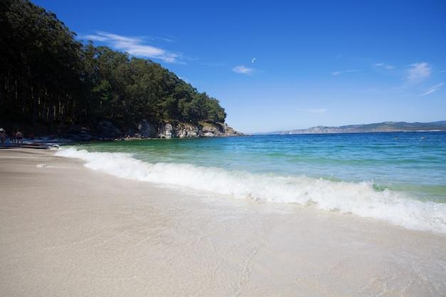 Praia selvagem no verão