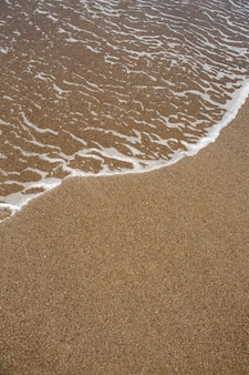 Praia tropical com areia marrom e águas claras