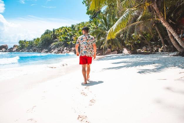 Praia tropical com palmeiras, água cristalina e areia branca