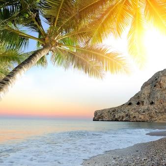 Praia tropical com palmeiras. linda paisagem tropical