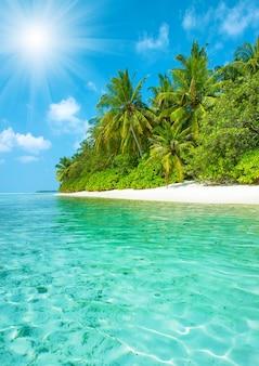 Praia tropical de areia com palmeiras e um céu azul perfeito. paisagem da ilha paradisíaca