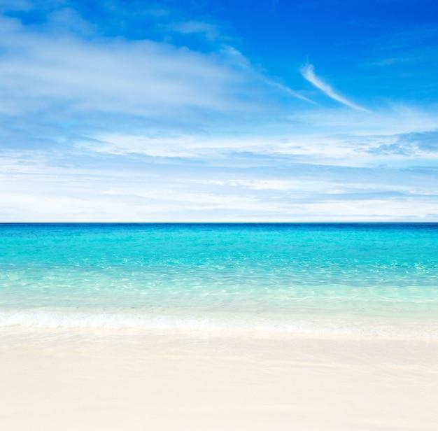Praia tropical e mar azul.