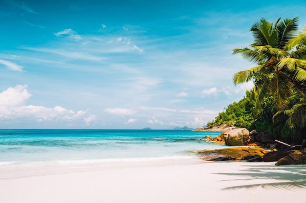Praia tropical imaculada e tranquila com areia branca e fina, águas cristalinas do oceano e palmeiras. conceito de férias e estilo de vida da temporada de verão.