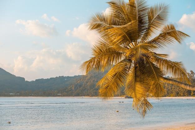 Praia tropical na ilha mahe, seychelles