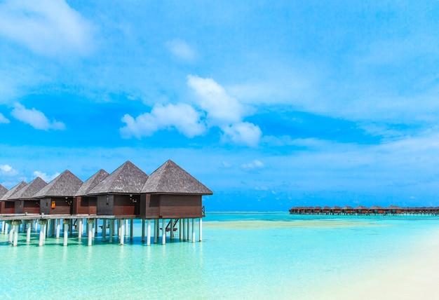 Praia tropical nas maldivas com poucas palmeiras e lagoa azul