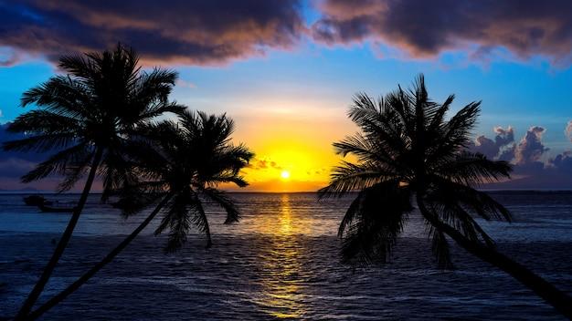 Praia tropical no pôr do sol com palmeiras de silhueta.