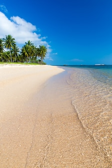 Praia tropical no sri lanka como conceito de férias para o turismo.