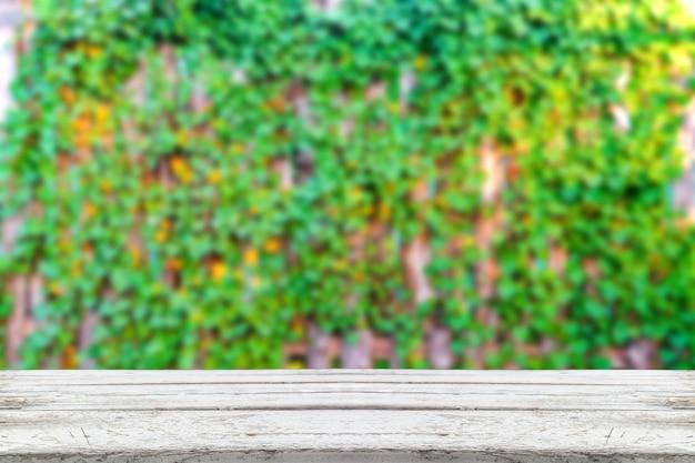 Prancha de madeira vazia na planta pequena no fundo da cerca