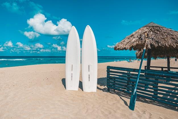 Prancha de surf de pranchas de stand up paddle presa na areia da praia. o standup paddleboarding está no mar. atracções turísticas em varadero.