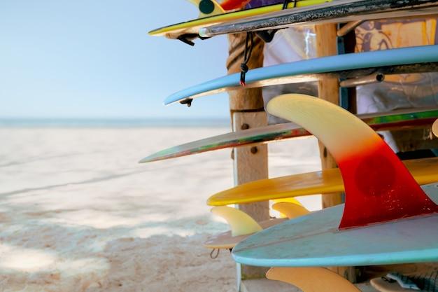 Pranchas de surf coloridas na loja para alugar na praia