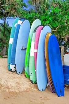 Pranchas de surfe multicoloridas vintage na praia do oceano asiático closeup extrema