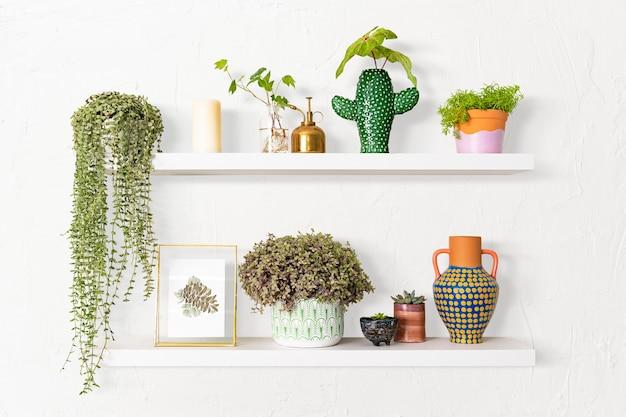 Prateleira de plantas, decoração interna para casa