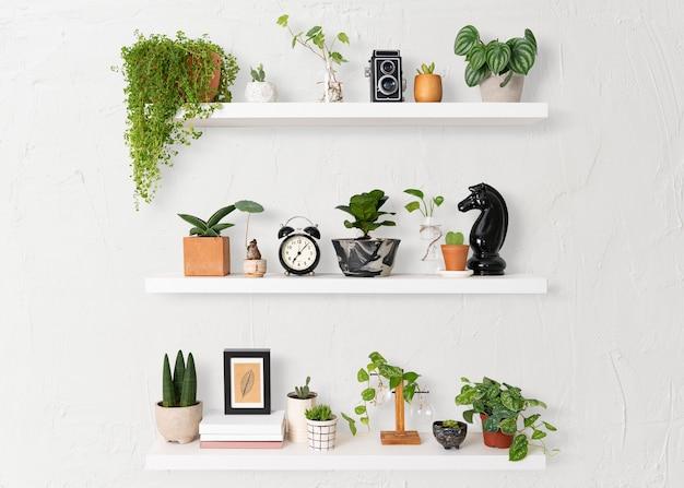 Prateleira de plantas para decoração de interiores