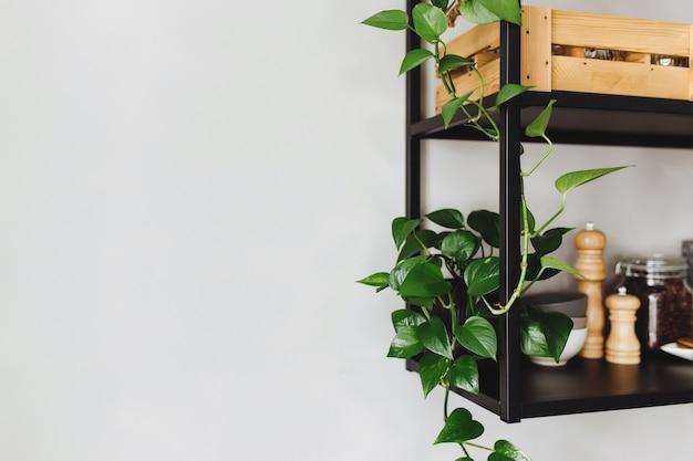 Prateleiras de metal preto na cozinha em uma parede de concreto cinza em estilo loft. vasos de flores verdes.