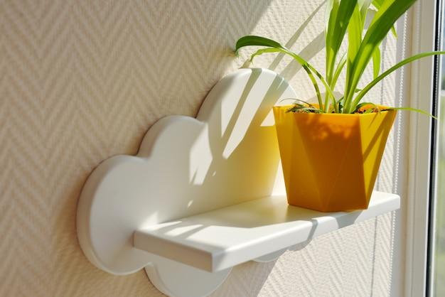 Prateleiras infantis em forma de nuvens brancas em uma parede bege lisa, na qual fica um vaso de flores amarelo sob forte luz do sol