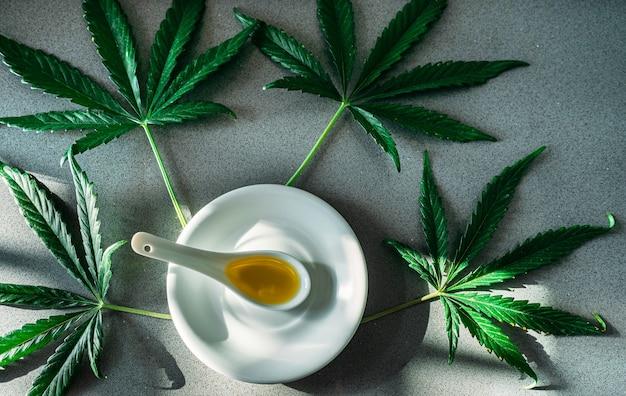 Prato branco com uma colher de porcelana contendo óleo de cbd e folhas de maconha ao redor para terapia.