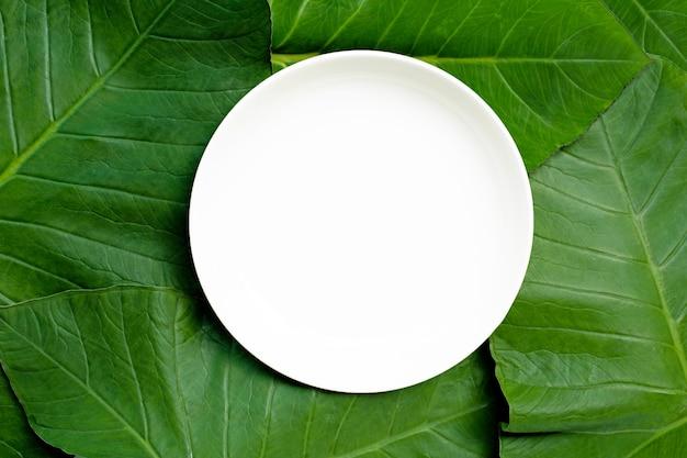 Prato de cerâmica branco vazio em folhas de taro. vista do topo