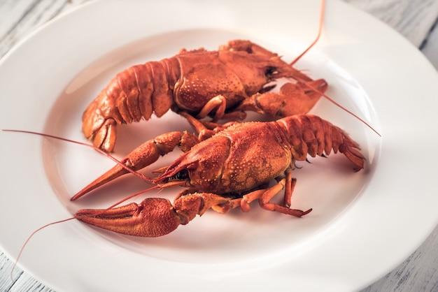 Prato de lagosta cozida com molho