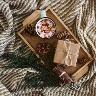 Presente e bebida perto de ramo e cones no cobertor