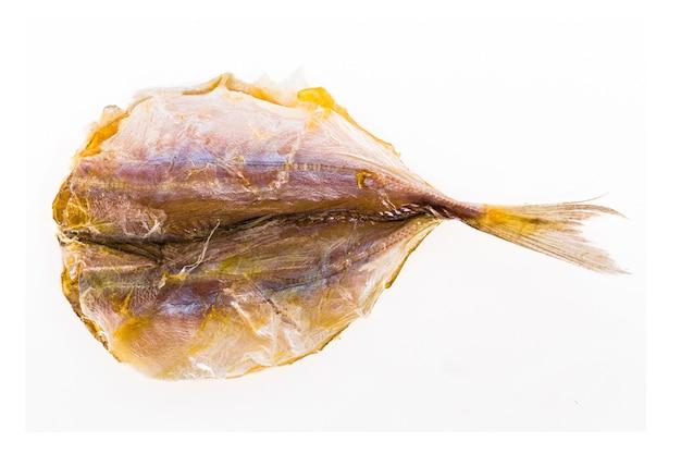 Preservação secada dos peixes em um fundo branco.