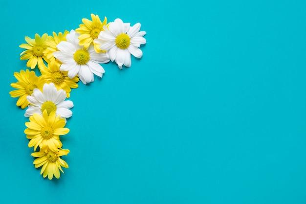 Pretty daisy composition