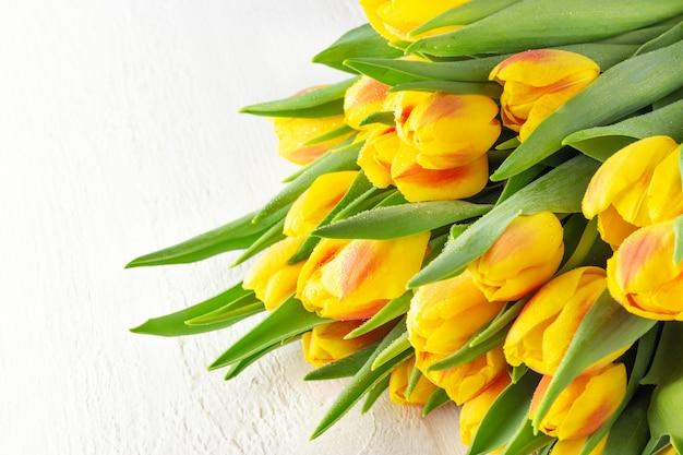 Primavera flor amarelo vermelho tulipas buquê