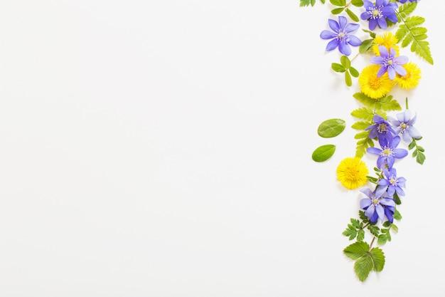 Primavera flores amarelas e violetas em fundo de papel