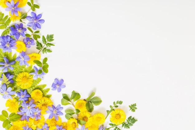 Primavera flores amarelas e violetas