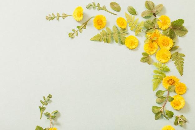 Primavera flores amarelas em papel