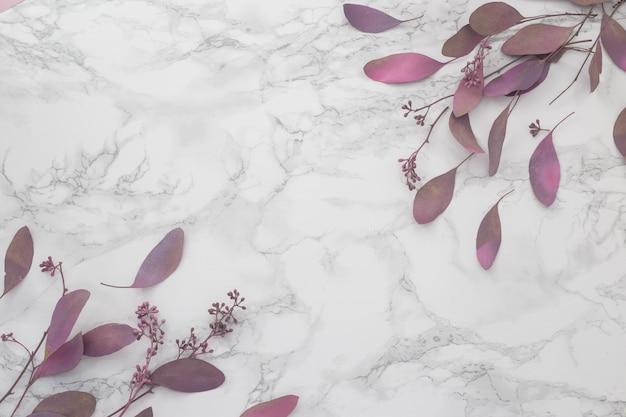 Primavera flores cor de rosa em um fundo de mármore. lugar para inscrição. vista do topo