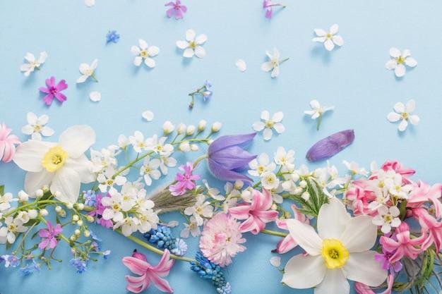 Primavera flores sobre fundo de papel