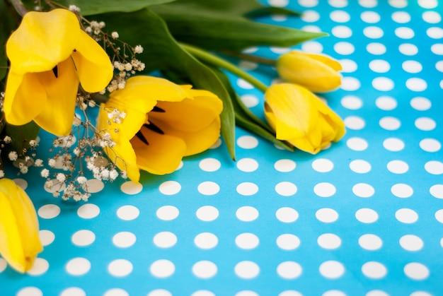 Primavera linda tulipa amarela flores sobre fundo azul