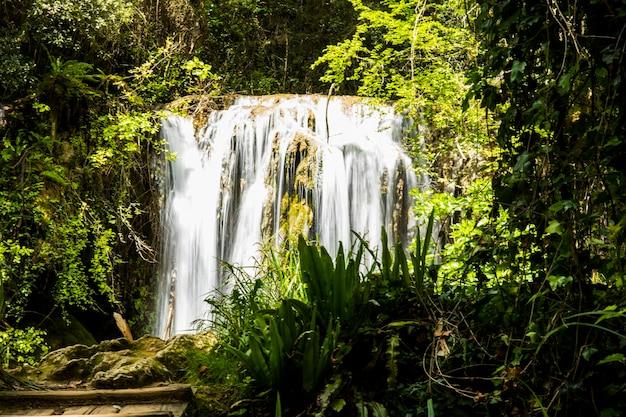 Primavera na cachoeira salt dels murris, la garrotxa, girona
