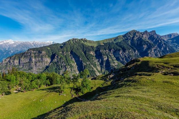 Primavera no vale de kullu, nas montanhas do himalaia. himachal pradesh, índia