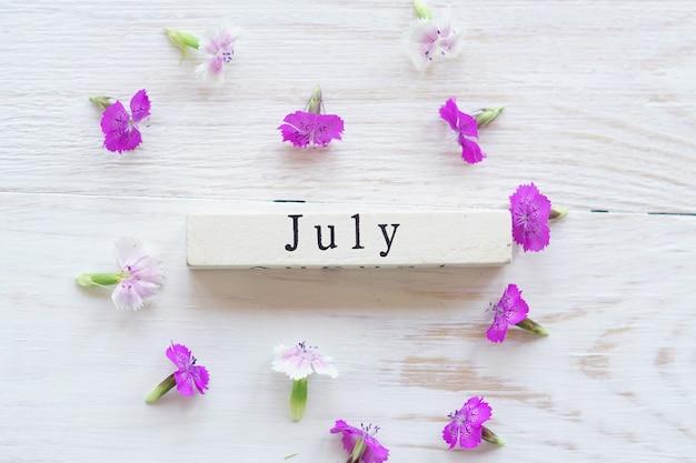 Primeiro dia de julho, fundo colorido com calendário e flores cor de rosa
