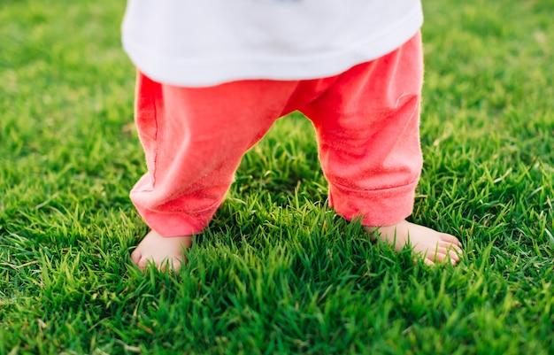 Primeiros passos do bebê recém-nascido