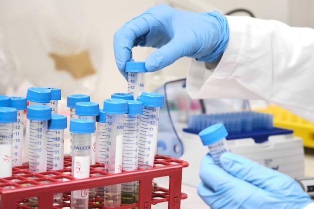 Processo de preparação de amostras por químico analítico.