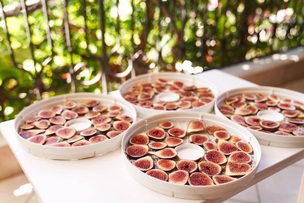 Processo de secagem de frutas em placas desidratadoras brancas na varanda