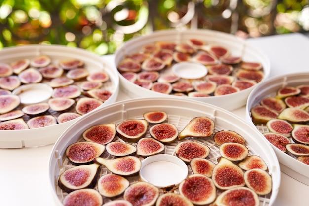 Processo de secagem de frutas em placas desidratadoras brancas