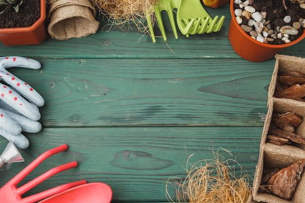 Processo de transplante de suculentas. mini brotos e acessórios de jardinagem