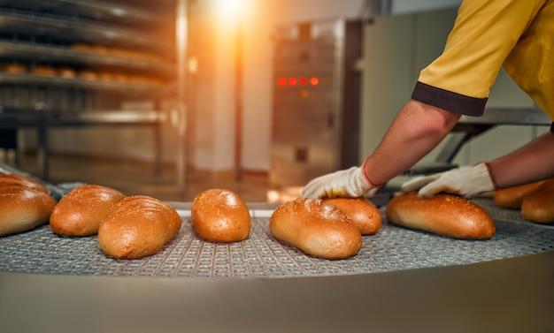 Produção de fábrica de alimentos de panificação de pão com produtos frescos. produção automatizada de produtos de panificação.