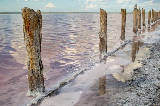 Produção de sal rosa, lagos salgados com algas e lama.