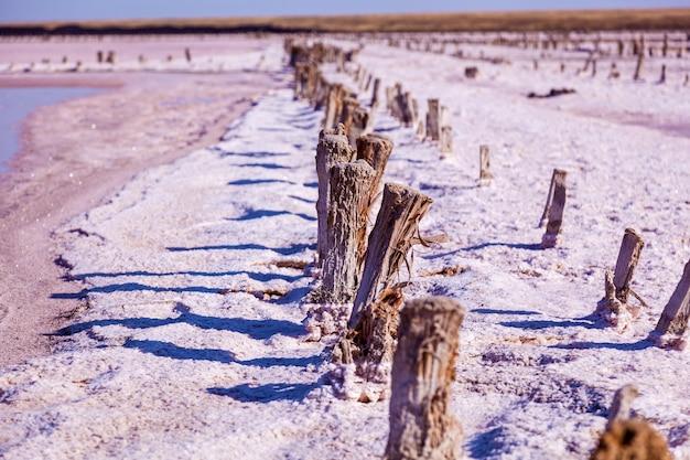 Produção de sivash do lago salgado de rosas e lama terapêutica e de sal. região de kherson da ucrânia