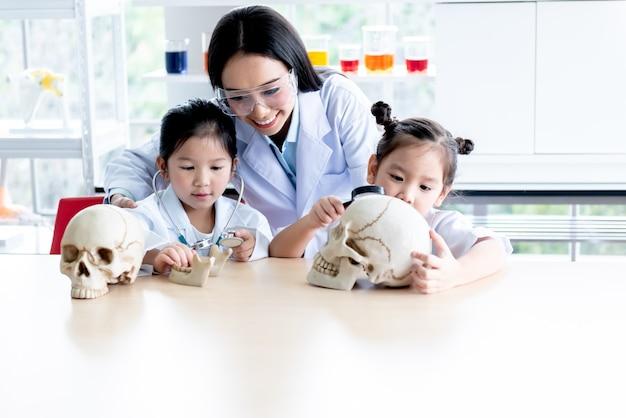 Professora asiática atraente, usando modelos de crânio humano para ensinar ciências a uma aluna