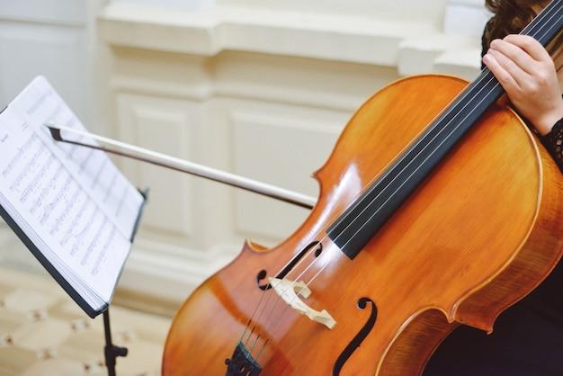 Profissional de música clássica com violoncelo