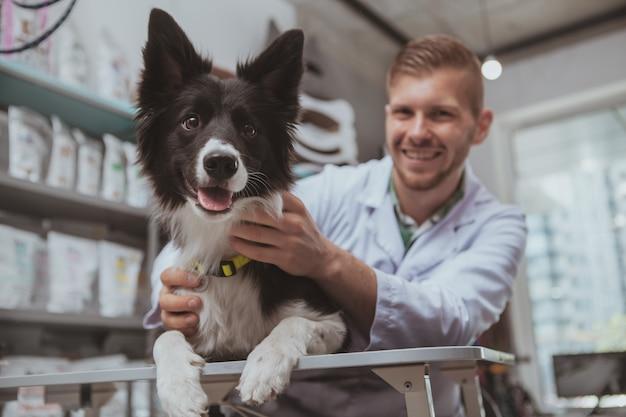 Profissional veterinário acariciando cachorro preto bonito na mesa de exame