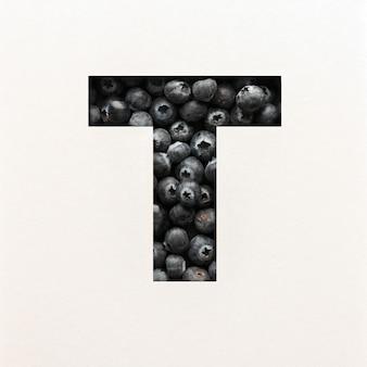 Projeto da fonte, fonte do alfabeto abstrato com mirtilo, tipografia realista de frutas - t